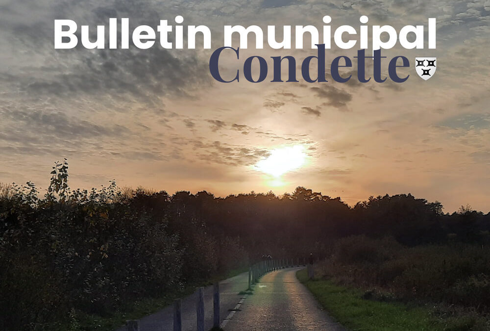 Bulletin municipal automne 2020